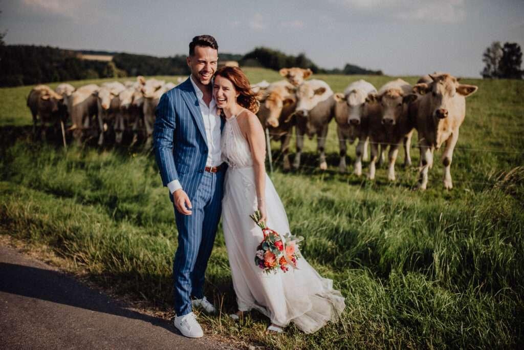 Ženich a nevěsta fotí s přihlížejícím stádem krav Orlické hory Kunvald   svatební fotky